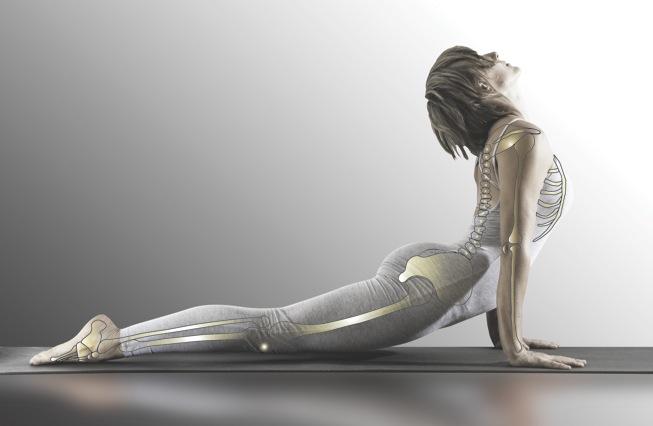 Denise Yoga updog